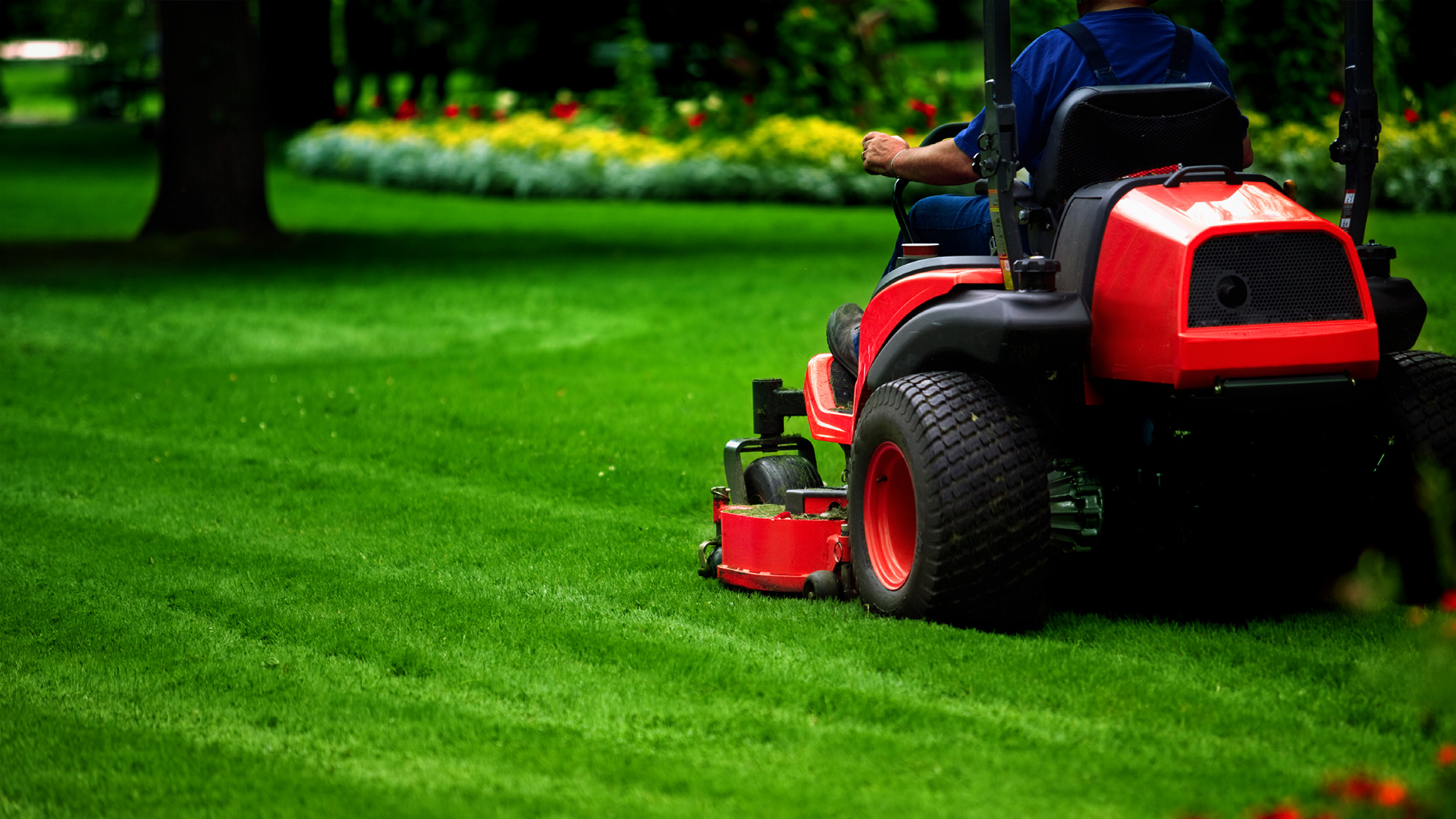 Services florida lawn and order st johns lawn care for Landscaping services
