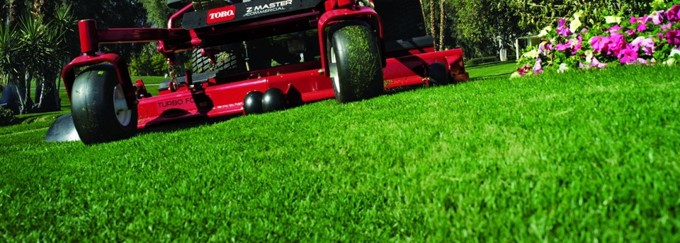 Lawn Care St. Johns FL